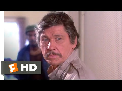 Death Wish II (1982) - Home Invasion Scene (3/12) | Movieclips