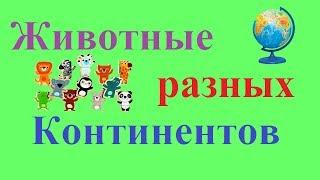 Для детей|животные разных континентов. Развивающее видео