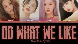 How Would BLACKPINK Sing 'DO WHAT WE LIKE' LYRICS + LINE DISTRIBUTION (FANMADE)