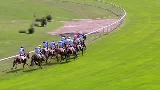 Vidéo de la course PMU PRIX DE LA JUNGFRAU