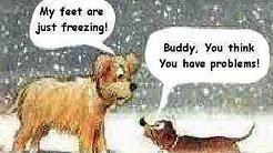 Global Warming? Major mid-Nov. snow in NE Ohio, freezing in Florida