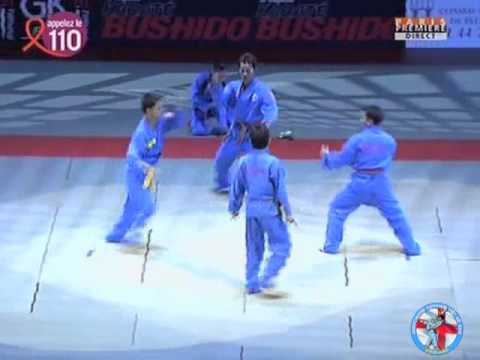 WVVF - VOVINAM VIET VO DAO DEMONSTRATION - BERCY PARIS 2008