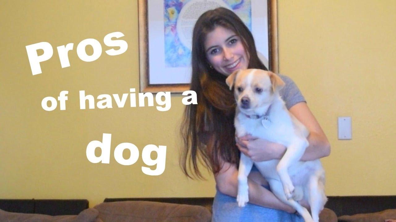 Pros of having a dog