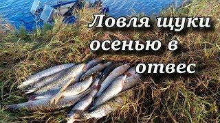видео Осеннее блеснение с лодки