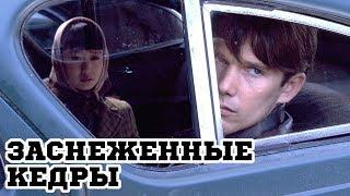 Заснеженные кедры (1999) «Snow Falling on Cedars» - Трейлер (Trailer)