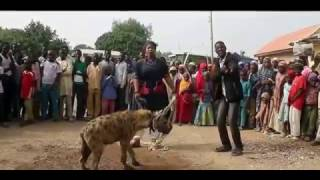 Download Video Mai Wasa Da KURA Trailer 2017 (Hausa Songs / Hausa Films) MP3 3GP MP4