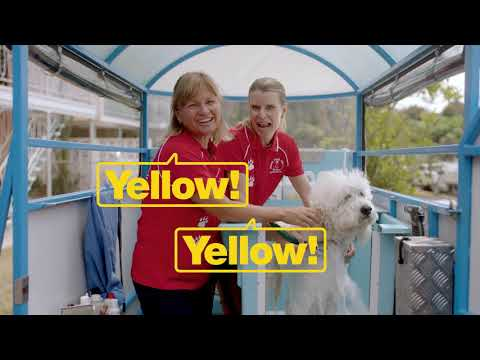 Free online business ad with Yellow Online - Yellow Australia Ad