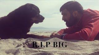 O ultimo Adeus - Big