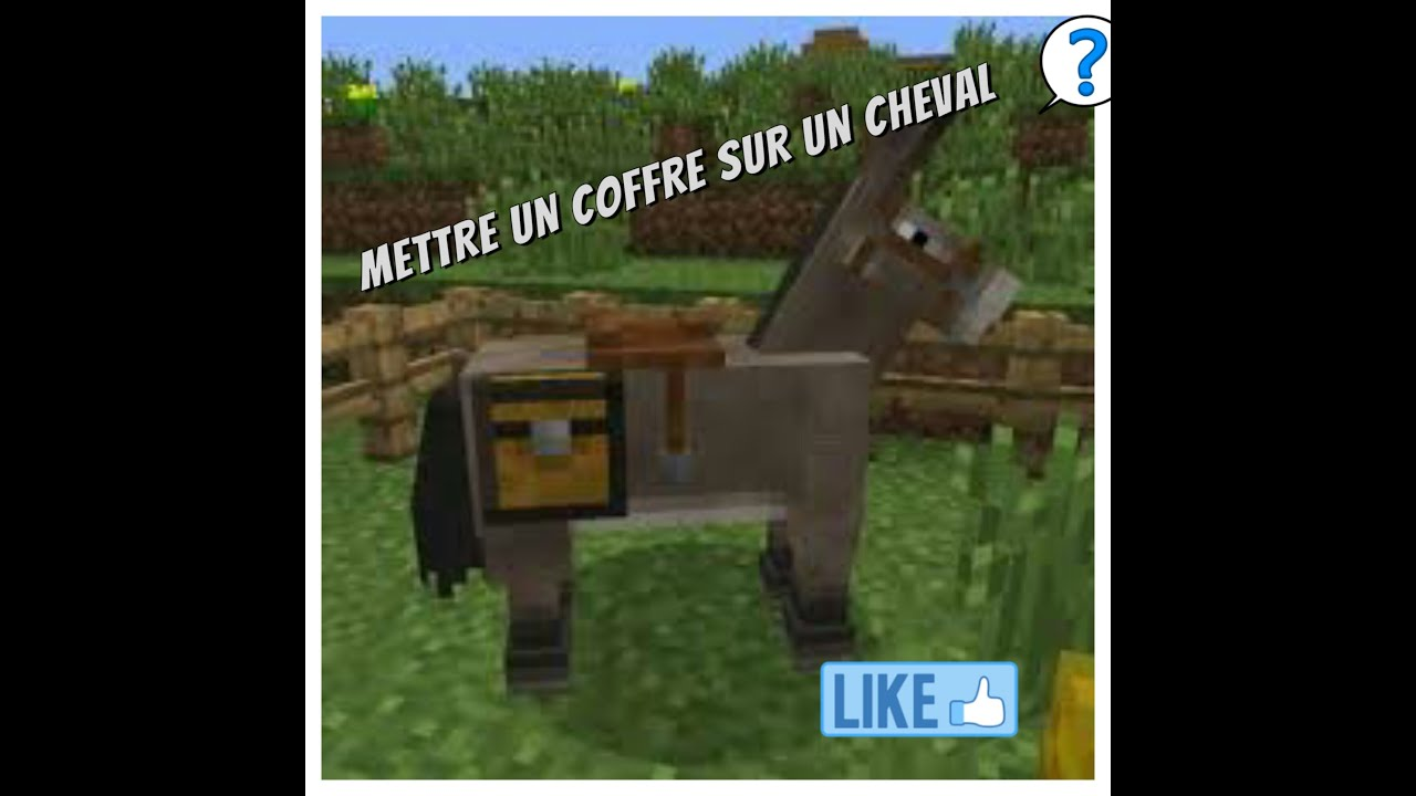 Comment mettre un coffre sur un cheval sur minecraft pe youtube - Cheval minecraft ...