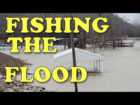 Catching Catfish in the Ohio River During a Winter FLOOD