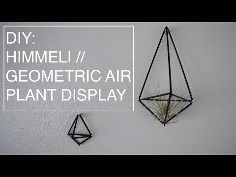 DIY Himmeli // Geometric Air Plant Display