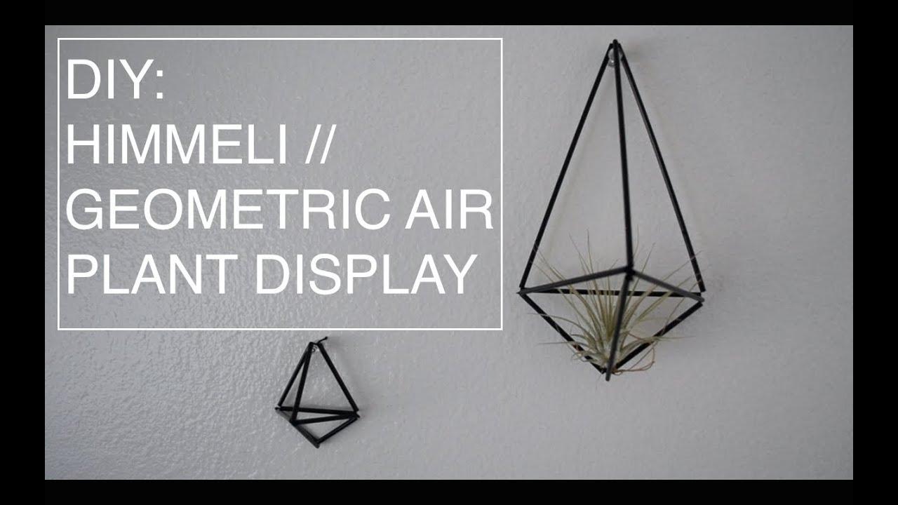 Air Plant Display Diy Himmeli Geometric Air Plant Display Youtube