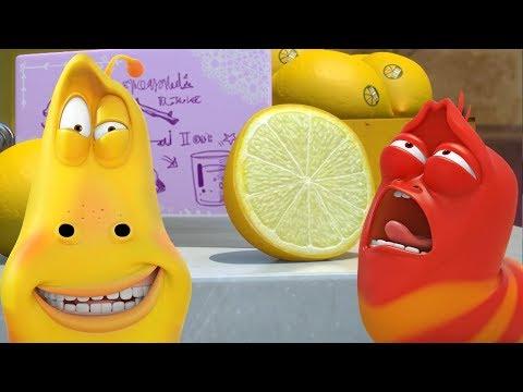 LARVA - SOUR TASTE | Cartoon Movie | Cartoons For Children | Larva Cartoon | LARVA Official