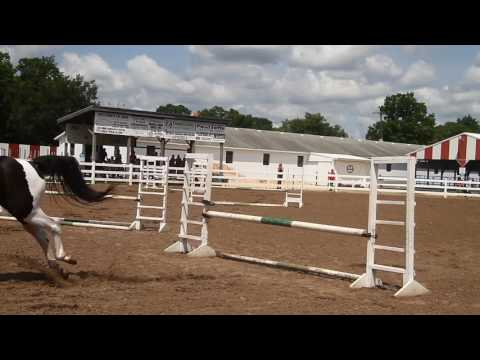 2017 Mecosta County Agricultural Free Fair