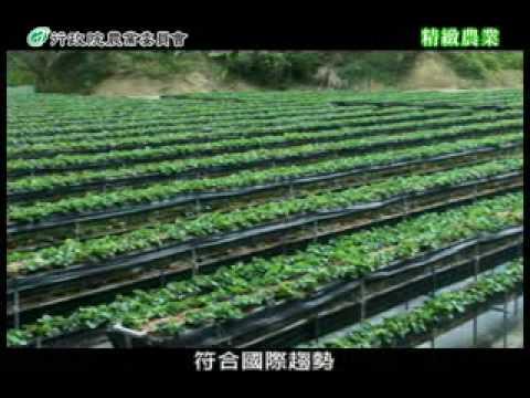 十大神農-精緻農業系列
