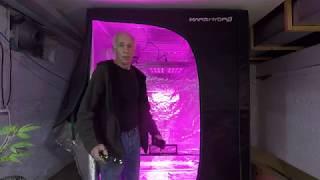 Home Grow S1|E17 / The Mars Pro II Epistar 320 LED / Mars Grow Tent.