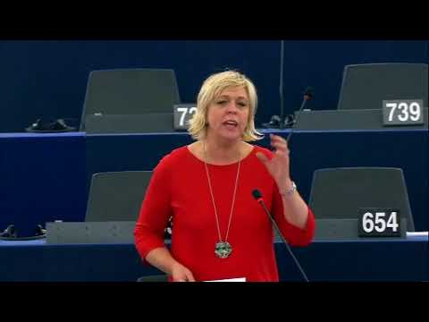 Hilde Vautmans 15 Nov 2017 plenary speech on Russian ban