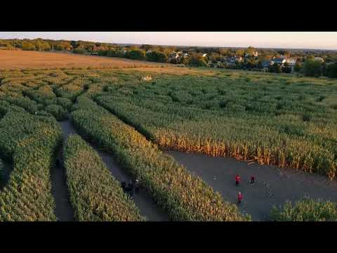 Richardson Farm Corn Maze 2017 (from the top of the tower)