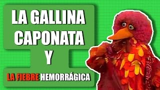 La gallina Caponata y la fiebre hemorrágica