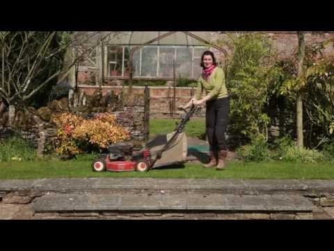 What to do in the garden in late spring