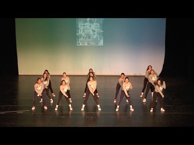 V Gala Benéfica Día de la Danza Internacional 2018