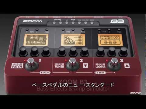 B3 Bass Effects & Amp Simulator