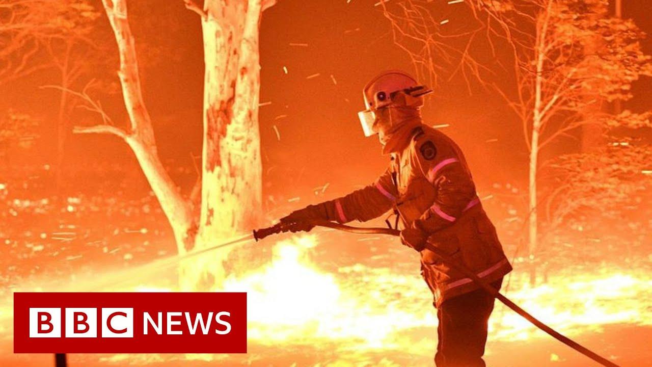Australia fires: Debunking 'arson emergency' claims - BBC News