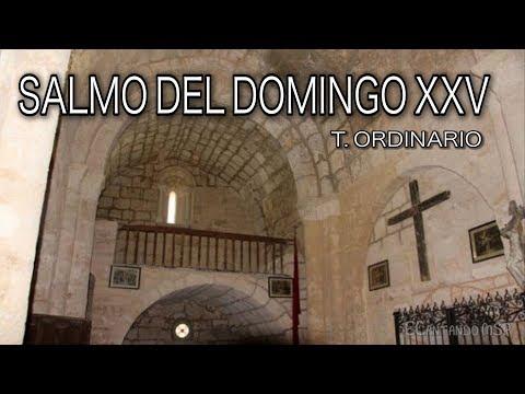 SALMO DEL DOMINGO XXV T.  ORDINARIO ( ¿DEBE DECIRSE ALGO ANTES DE CANTAR EL SALMO?)
