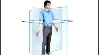 Anatomical Position and Cardinal Planes.mp4