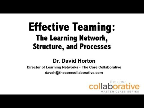 Effective Teaming: The Learning Network, Structure, and Processes