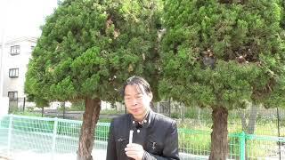 第13代 桂太郎>(1908.7.14~1911.8.30)(第2次桂内閣)戊申詔書。伊...