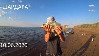 ШАРДАРА рыбалка, уха, хе и  отдых на пляже 10.06.2020