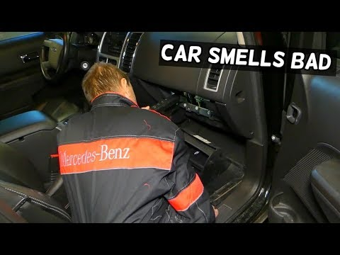 WHY MY CAR SMELLS BAD | MICE POOP IN THE HEATER