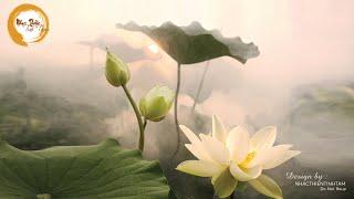 Nhạc Thiền Tĩnh Tâm - Mở rộng tâm ra lòng thanh thản, một khúc nhạc thiền đời an nhiên