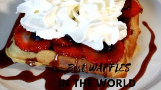 How TO Make The Best Waffles in The World    Recipes By Chef Ricardo