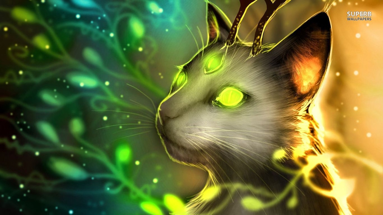 Top 10 most Mysterious Warrior Cats (Photo Sensitive Epislepsy Warning)