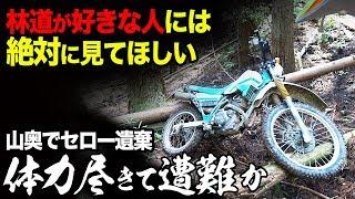 【体力尽きて遭難か】林道に興味がある人には絶対に見てほしい【バイクで遭難事故】