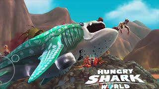 Last Shark Video Before Megalodon - Hungry Shark World