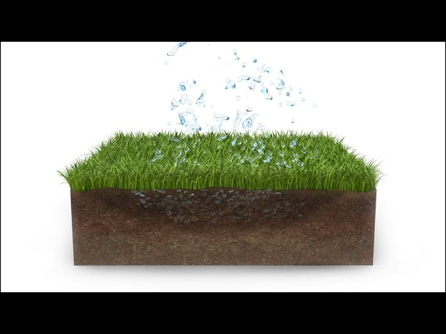 The Benefits of Paving with Grass Pavers
