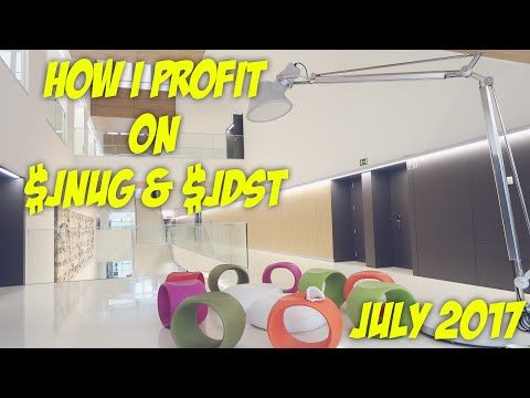 Why I Always Day Trade $JNUG & $JDST For Profit | Penny Stock Investor