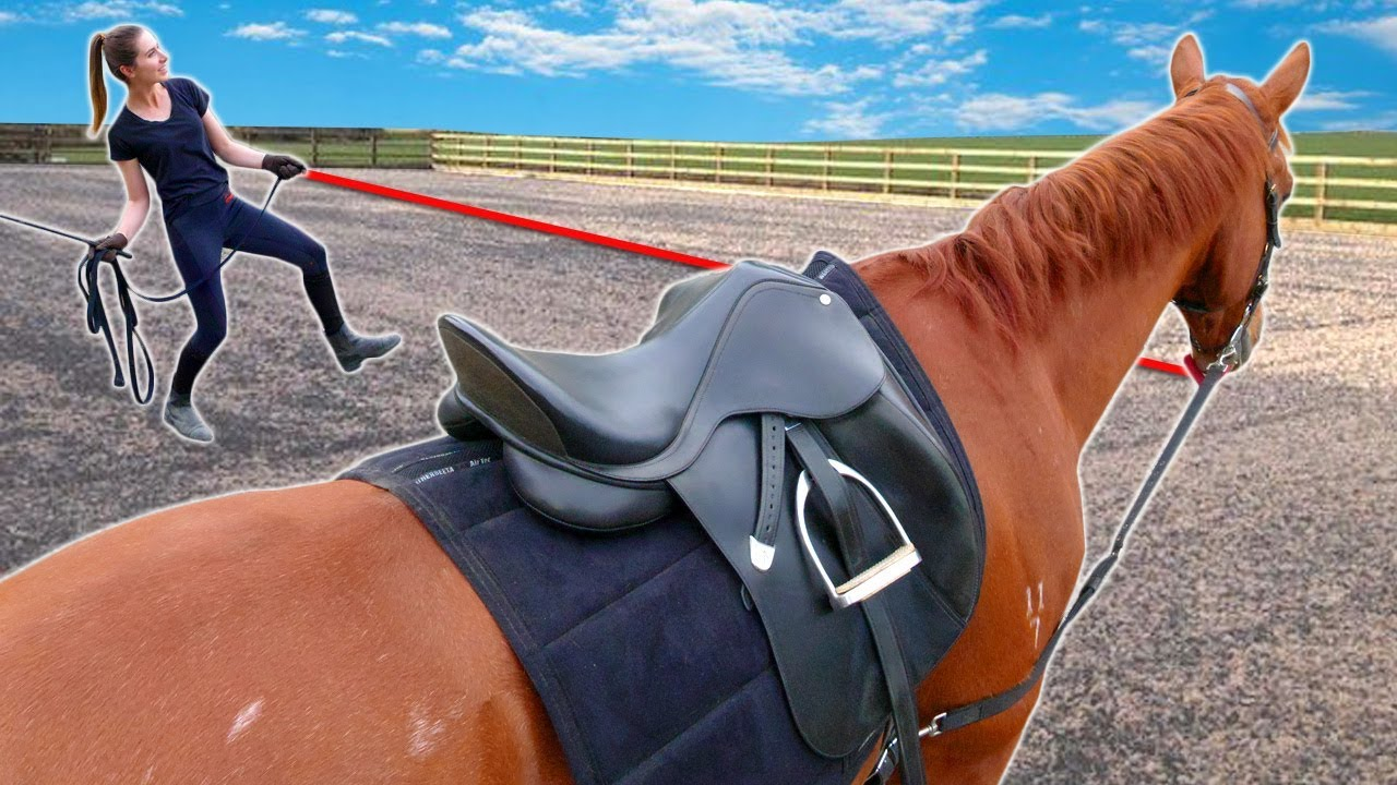 GROOM, TACK UP & LUNGE WITH ME!