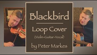 BLACKBIRD | Loop Cover (Violin/Guitar/Vocal) by Peter Markes