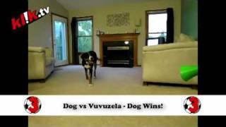 5 Funniest Vuvuzela Videos