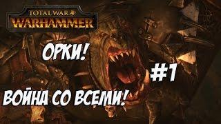 Total War: Warhammer. Легенда. Война со всеми. Орки. #1