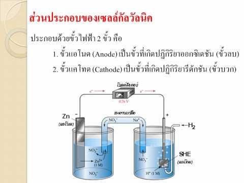 เซลล์ไฟฟ้าเคมีและปฎิกิริยารีดอกซ์