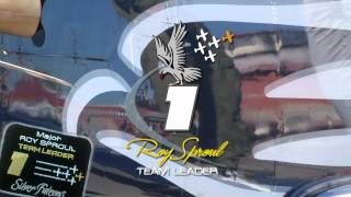 Silver Falcons (The Roy Sproul Tribute)