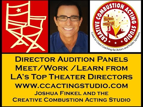 Steven Dry Theatrical Agent Director Audition Panel Feedback