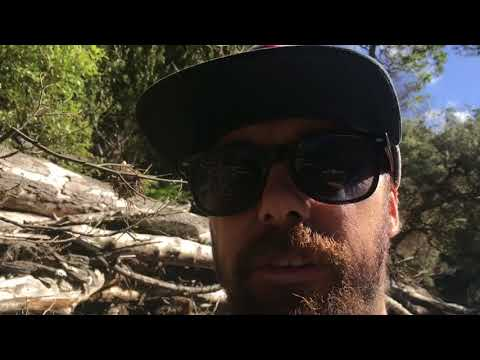 Prospecting for gold Tasmania