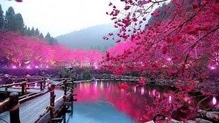 천하비경 아름다운 자연 풍경