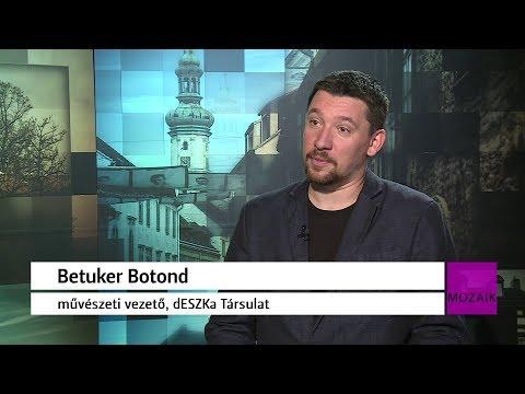 Mozaik - közéleti magazin - vendég: Betuker Botond - 2017.11.13. - Hétfő - Sopron TV